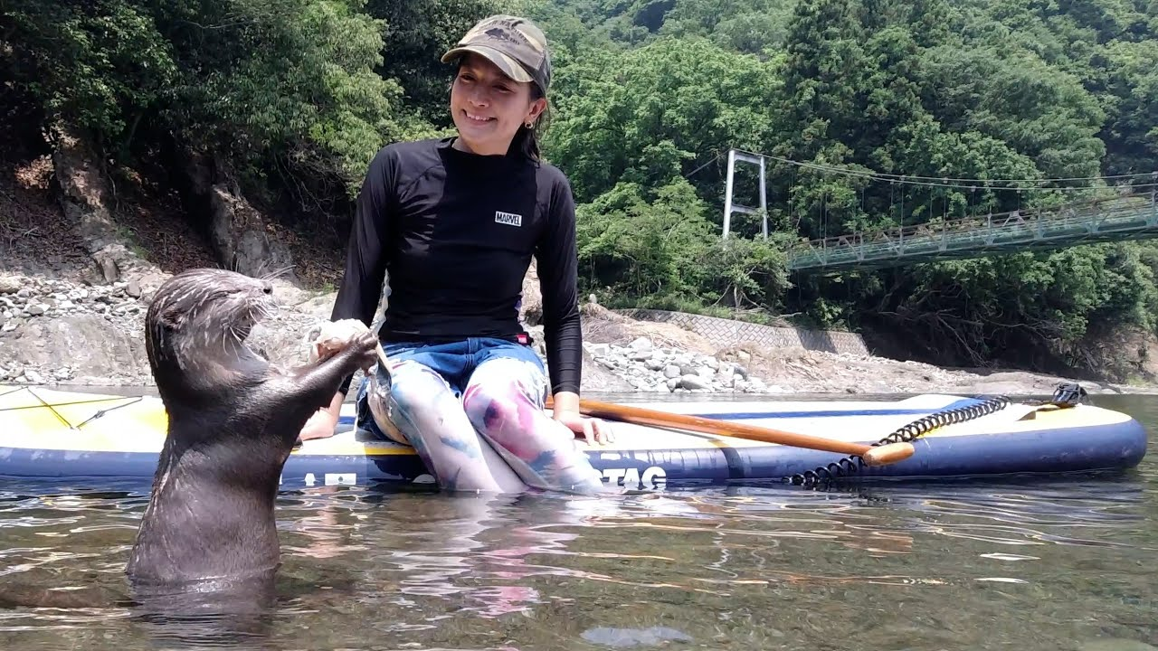 Camping with Instagrammer, Yoshimi Lynn and Omichan at Noro Lodge[Otter life Day 289]【カワウソアティとにゃん先輩】