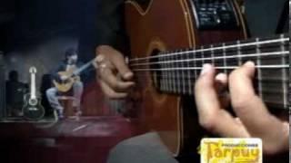 FLOR DE RETAMA-GAVILAN-GUITARRA ANDINA. HUANTA