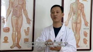 ACUPUNCTURE & CUPPING by Empty Mind Films