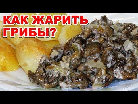 Как пожарить грибы в сметане и луком