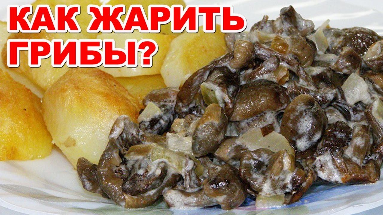 Как жарить грибы со сметаной и с луком. Вкусное и простое ...