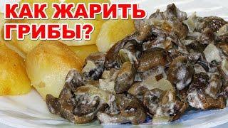 Как жарить грибы со сметаной  и с луком. Вкусное и простое блюдо за считанные минуты. ВКУСНЫЕ БЛЮДА