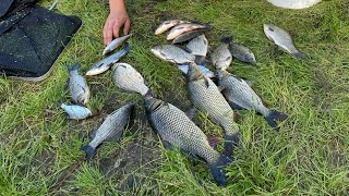 Последняя рыбалка летом 2021 Рыбалка на реке Сура на ДОНКИ Неплохой улов