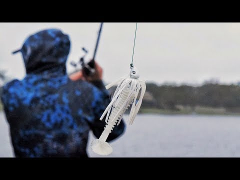 Cold Weather Bass Fishing In Florida