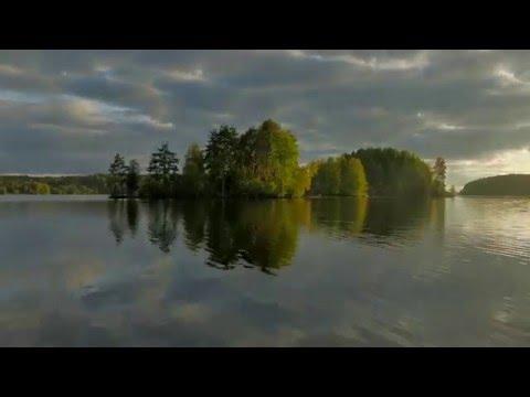 лучшие места для подводной охоты в ленинградской области
