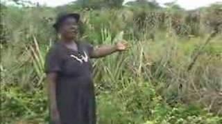 Haiti - Let Agogo 1 (Kreyol)