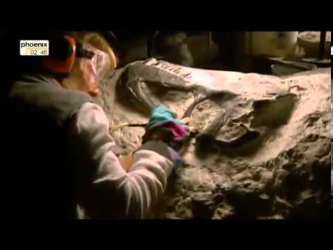 Steppe der Dinos   Spurensuche am Hell Creek Doku über Dinosaurier Teil 3