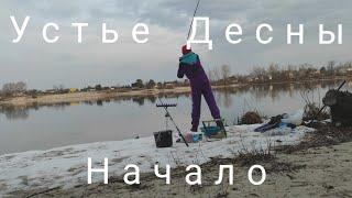 Фидерная рыбалка на Десне 2021