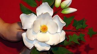 Изготовление искусственных цветов. Как сделать цветок магнолии(Изготовление искусственных цветов. Предлагаю вам посмотреть мастер-класс по лепке магнолии и виноградной..., 2014-07-23T06:15:02.000Z)