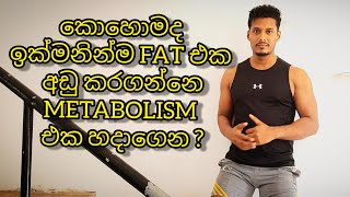 How To Boost Your Metabolism For Fat Loss