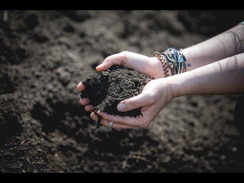 Prairie Lane Elementary is a Composting School!
