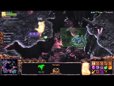 Amons Fall Brutal Speedrun [9:41] Blizzard Time - Starcraft 2 Legacy of The Void