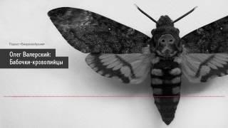 Олег Валерский: Бабочки-кровопийцы