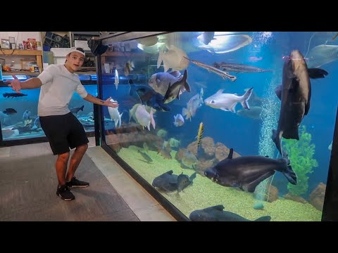 WORLDS LARGEST INDOOR HOME AQUARIUM!!!