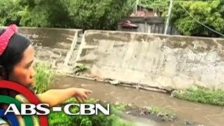 Bandila: Pananakit ng lalaki sa isang pusa sa Albay, nag-viral