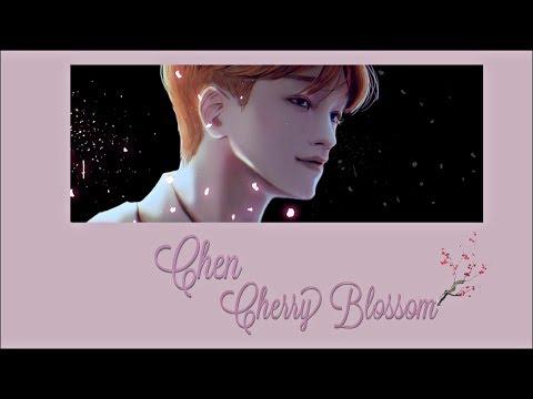 EXO Chen Cherry Blossom OST | 100 Days My Prince Acapella