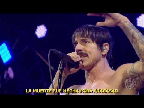 Goodbye Angels (RHCP) Live Lollapalooza (July, 2016) Sub Spanish