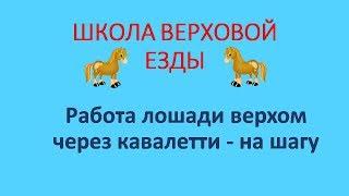 Работа лошади верхом через кавалетти на шагу
