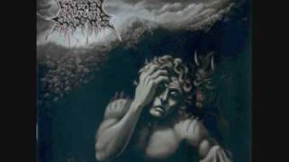 Frozen Shadows - Through Field Of Mercilessness