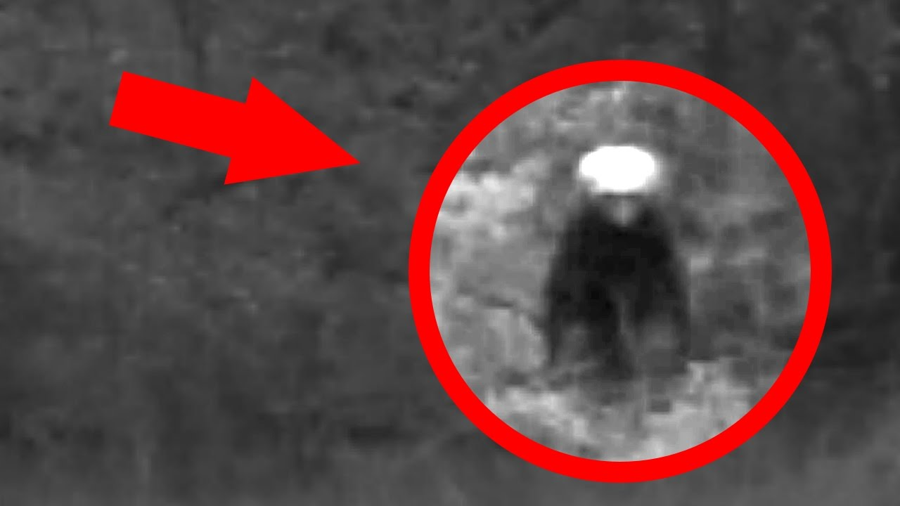 2017 Top 5 Aliens CAUGHT On Camera | Real Aliens Exist ...