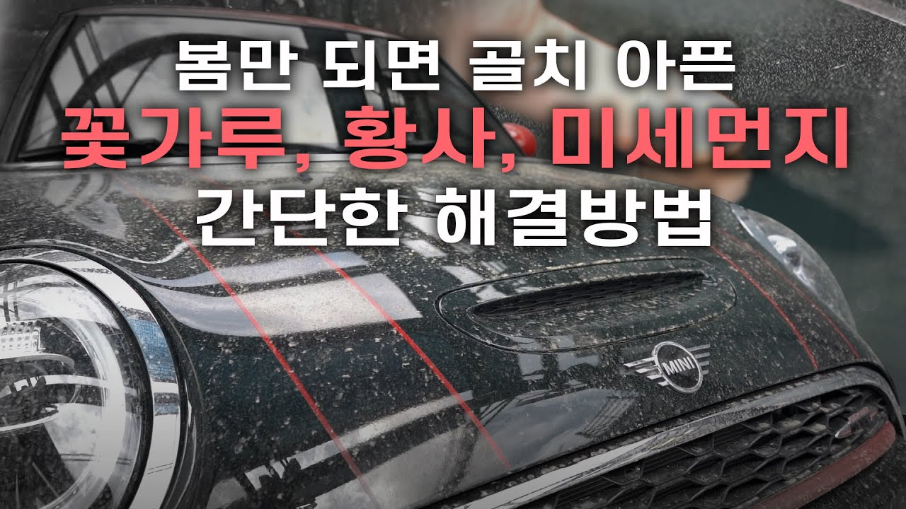 꽃가루, 황사, 미세먼지에 내 차를 보호할 수 있는 세차 방법 !!!