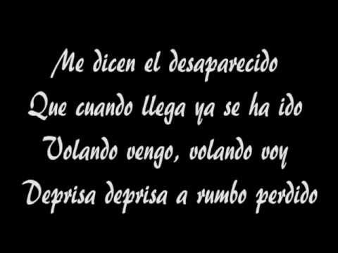 Manu Chao - Desaparecido con testo (with lyrics).avi