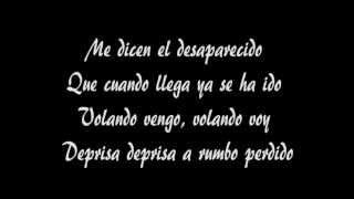 Manu Chao - Desaparecido con testo (with lyrics).avi