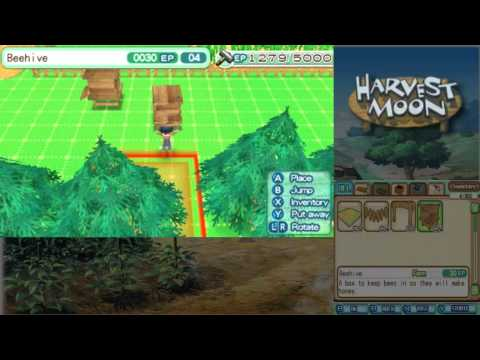 Let's Play Harvest Moon: A New Beginning 23: Bees and Water