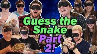 blindfolded-snake-challenge-game-part-2