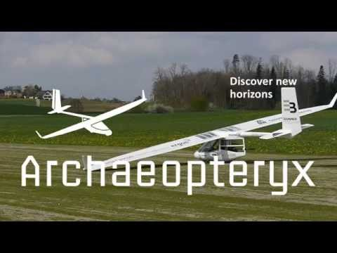 Archaeopteryx Electric