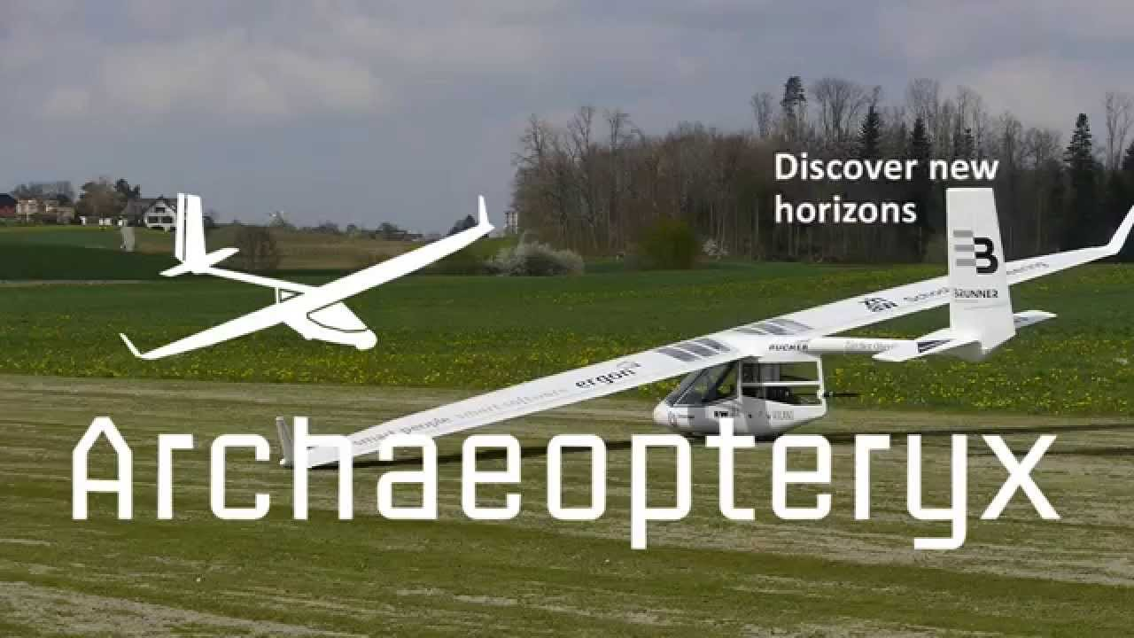 "Archaeopteryx Electric ""Electeryx"""