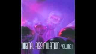 Voxis Machina - Paradoxia (DLCTF Mix) [Bret Autrey Blue Stahli]