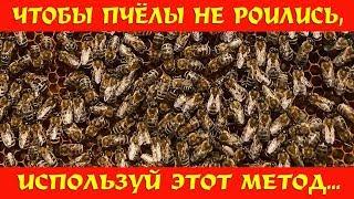 Чтобы пчёлы не роились, используй этот метод!