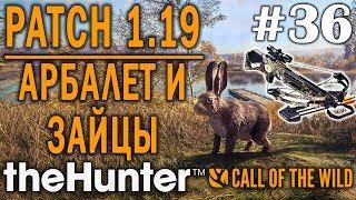 theHunter call of the wild #36 🔫 - Патч 1.19 - Охота Из Арбалета - Охота На Зайцев - Новое Оружие!
