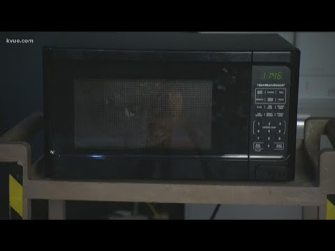 Scotty Mac - PRANKSGIVING Gone Viral: How To Microwave A Turkey. MOM?