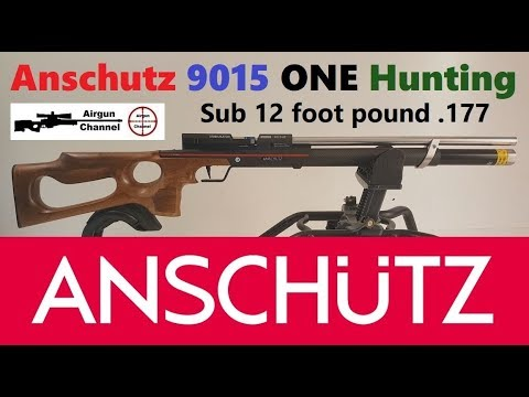 Anschutz 9015 ONE Hunting (First Look) Sub 12 Foot Pound PCP .177