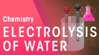 Electrolysis of Water & Hydrochloric Acid | Reactions | Chemistry | FuseSchool