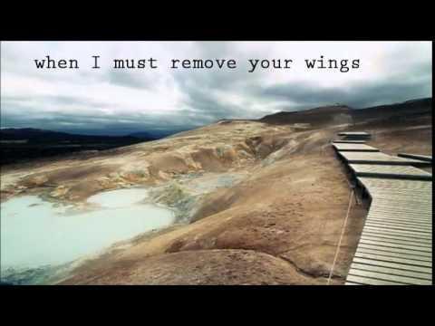 Nick Cave & The Bad Seeds - The ship song (lyrics)