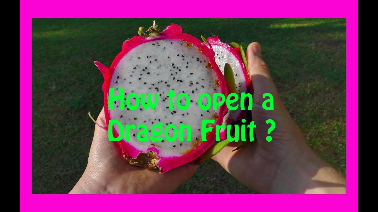 fruit gifts how to eat dragon fruit