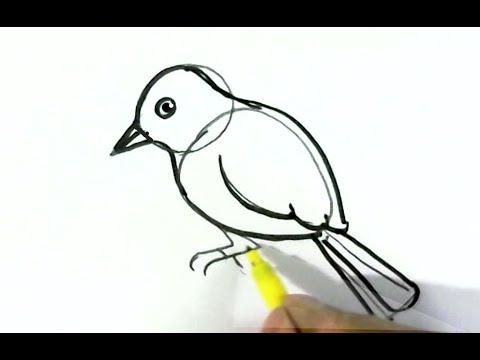 How to draw easy bird easy steps for children beginners