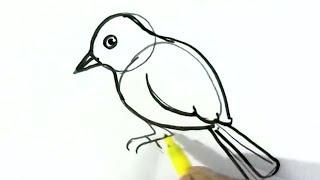 easy bird drawing sketch cartoon draw beginners children drawings steps paintingvalley sketches