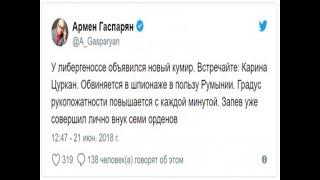 Румынская шпионка угрожала Крыму, Донбассу и Турции