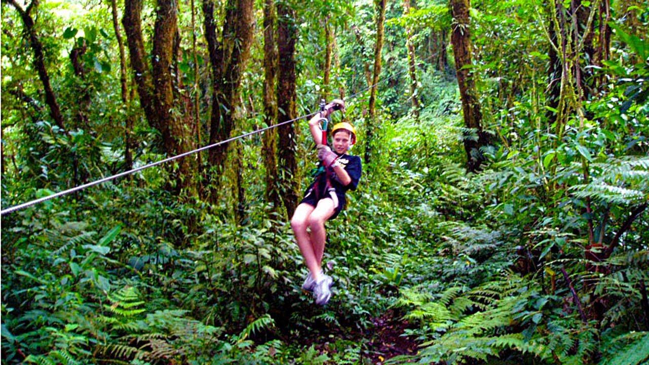 Zipline Obstacle Course Treetop Trek Aerial Adventures