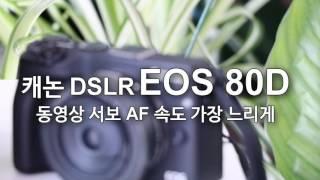 캐논 EOS 80D 동영상 서보 AF 속도 조절