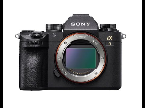 Sony A9 Official Preview: Dual SD Cards,