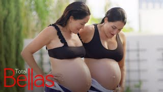 "Follow Nikki & Brie Bella's Pregnancy Story on ""Total Bellas"" 