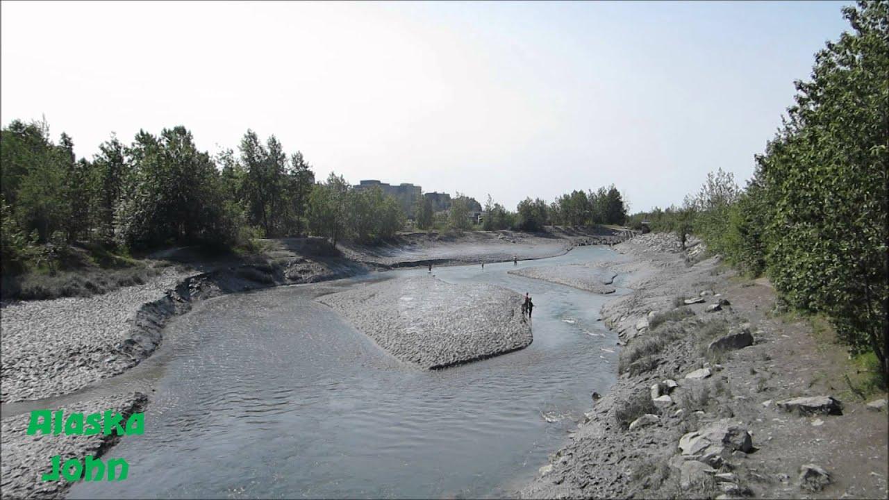 Ship creek fishing anchorage alaska youtube for Anchorage alaska fishing