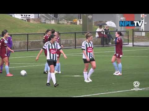 NPL NSW Women's Round 12 – Northern Tigers v APIA Leichhardt