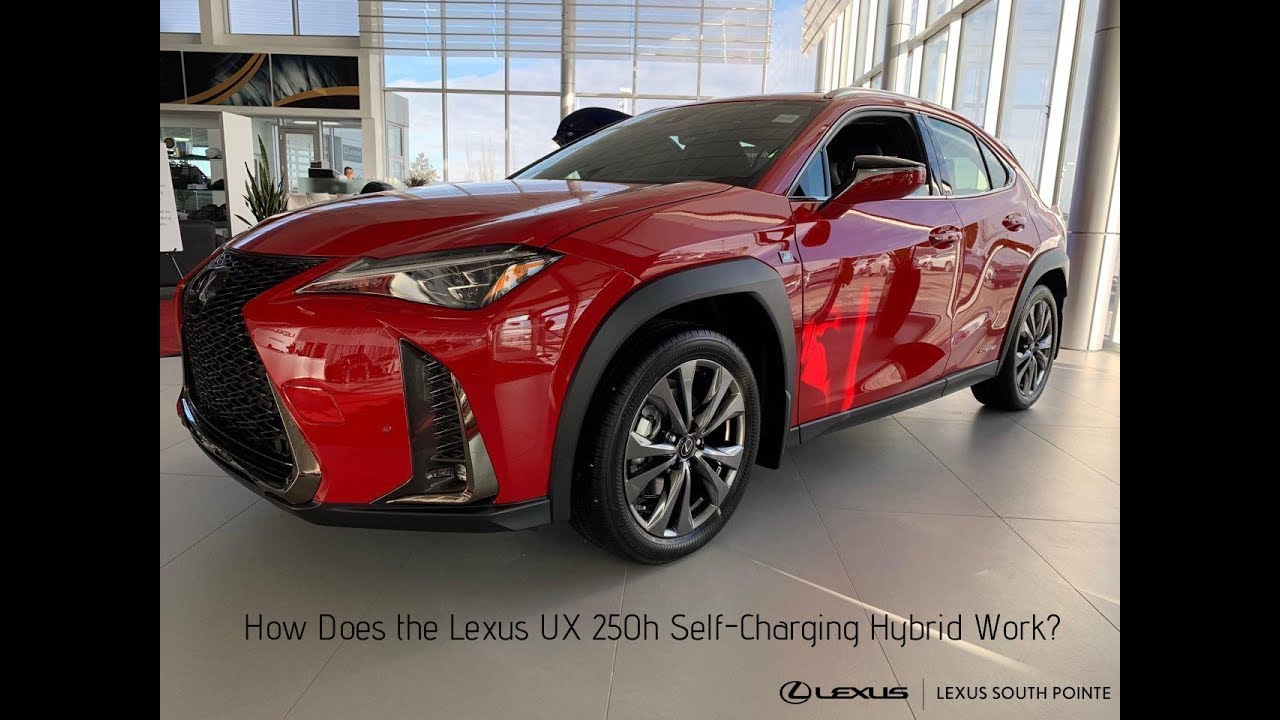 6 Things We Bet You Didn't Know About the Lexus UX - Lexus