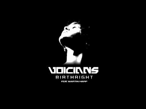 Voicians - Birthright feat. Martin Harp (Celldweller Cover)